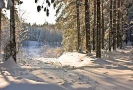 Зимняя одежда для ОХОТЫ, РЫБАЛКИ И туризма